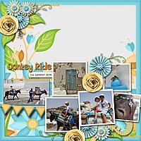 Donkeyride2.jpg