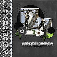 Downay_Woodpecker-Traveloge.jpg