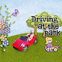 Driving-at-the-park.jpg