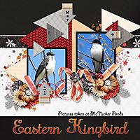 Eastern_Kingbird1_small.jpg