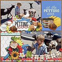Everyday_moments_1_TD_ATZ_Petting_zoo_MC_-_Ella.jpg