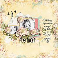 FD-Fly-High.jpg