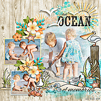 FD-an-ocean-of-memories.jpg