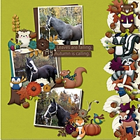 Fall_Gathering_Horse.jpg