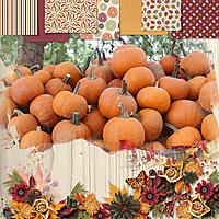 Fall_Harvest.jpg
