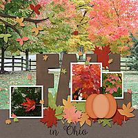 Fall_in_Ohio_web.jpg