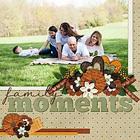 Family-Moments1.jpg