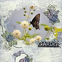Family2014_Butterfly_500x500_.jpg