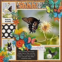 Family2014_Butterfly_700x700_.jpg