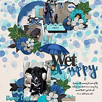 Family2017_WetPuppy_600x600_.jpg