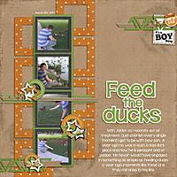 Feed-the-DucksWEB.jpg