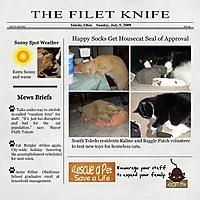 FiletKnife.jpg