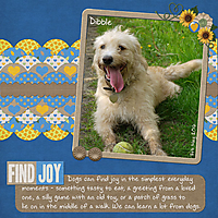 Find_Joy_sml.jpg