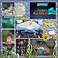 Florida-Aquarium-visits-Tinci_TIA1_2-copy.jpg