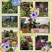 Flower-_-Garden-Festival.jpg