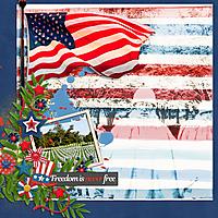 Freedom13.jpg