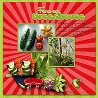 From_my_greenhouse.jpg