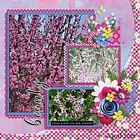 Full-Bloomweb.jpg