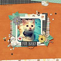 Fur_Baby5.jpg
