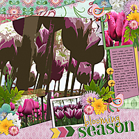 Garden_Song.jpg