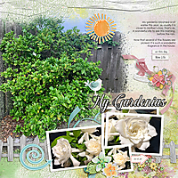 Gardenia-2020-MFish_BlendedClusters3_04-copy.jpg