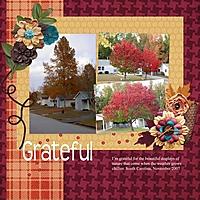 Grateful17.jpg