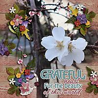 Grateful_Heart1.jpg