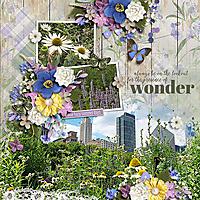 HSA-lavender-fields-600.jpg