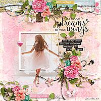 HSA_let-your-dreams.jpg