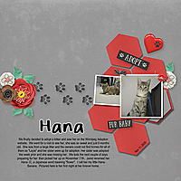 Hana_s_Adoption_Nov_11_2020-001_copy.jpg