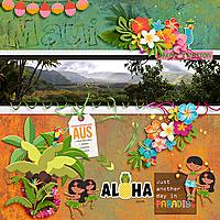 Hawaii-cmgAlohaland.jpg