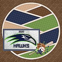 Hawks-baseball-2020-MFish_CutUp_01-copy.jpg