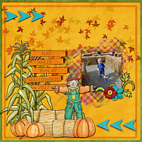 Hay-Maze-Fun-web.jpg