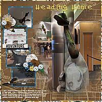 HomeAgain_12292020.jpg