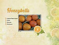 Honeybells.jpg