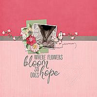 Hope-copy.jpg