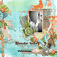 House-rules1.jpg