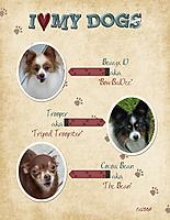 I-Love-My-Dogs.jpg