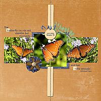 IR_DAeternalbutterflies.jpg