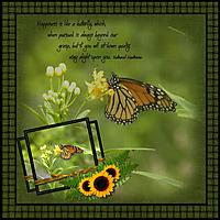 IR_butterfly.jpg