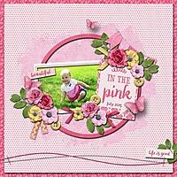 In_The_Pink_med.jpg