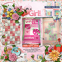 It_s-a-Girl-quilts-aimeeh_brushed4_tmp2-copy.jpg