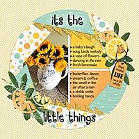 It_s_The_Little_Things_med_-_1.jpg