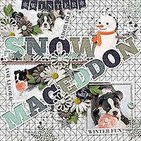 JBS-SnowMageddon.jpg