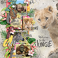 JSD-Welcome-to-the-Jungle-5June.jpg
