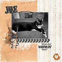 Jake2.jpg