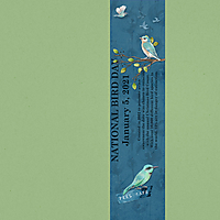 Jan-5---Fill-a-Fourth---National-Bird-Day.jpg