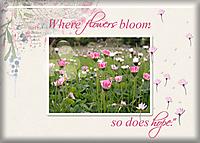 Jan-9-Bokeh-Effect--ATC-2021-004-Where-Flowers-Bloom.jpg