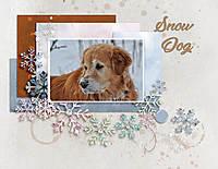 January-8-Filled-Template-Challenge-Snow-Dog.jpg
