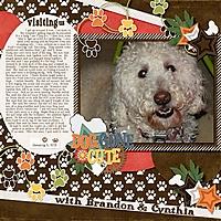January_5_2021-banner_6-Dog_s_Life.jpg